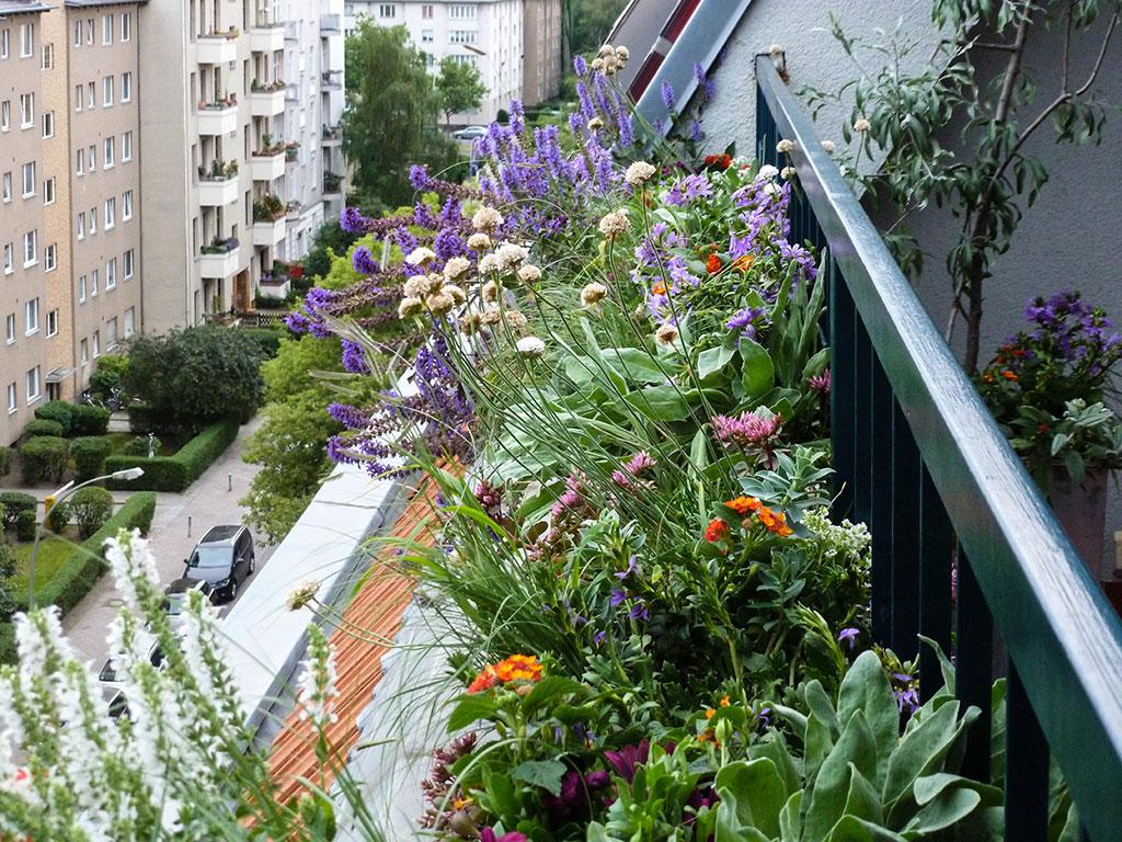 Balkon und Terrassengestaltung