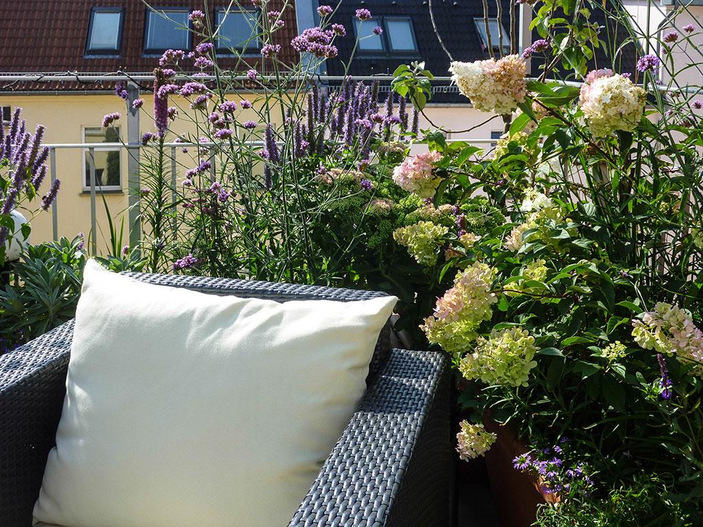 Terrassen- und Balkonbepflanzung
