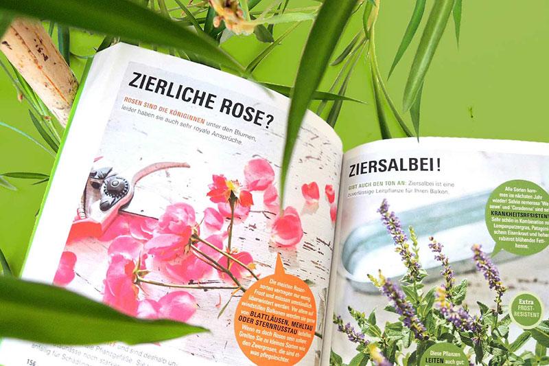 Balkongärtnern – Jetzt wird es richtig schön! Das Buch von Dipl.-Gärtner Tobias Peterson, Berlin