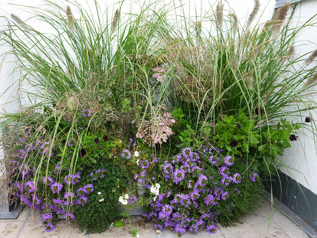 Pflanzgefäß für Balkon und Terrasse
