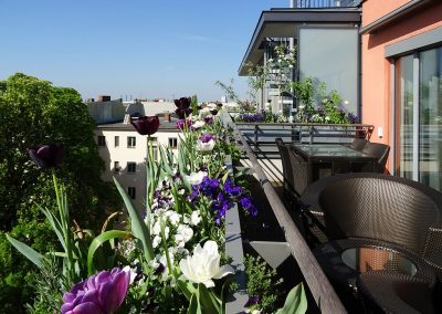 Balkon_Gaertner_Berlin_F18_070