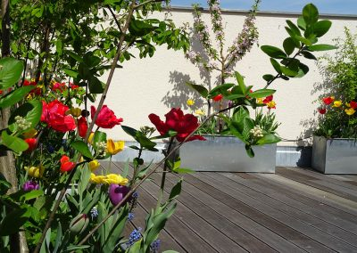 Balkon_Gaertner_Berlin_F18_072